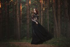 A beautiful gothic princess with pale skin and very long red hair in a black crown and a black long dress in a misty fairy forest. royalty free stock image