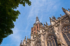 Beautiful Gothic style cathedral in Den Bosch, Netherlands. Detailed exterior design of the most popular landmark in Den Bosch Stock Photos
