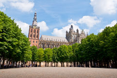 Beautiful Gothic style cathedral in Den Bosch, Netherlands. Detailed exterior design of the most popular landmark in Den Bosch Royalty Free Stock Photography