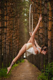 Beautiful and graceful aerial gymnast does exercises on the ring Royalty Free Stock Photo