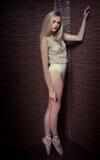 Beautiful graceful ballerina Royalty Free Stock Images