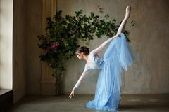 Free Beautiful Graceful Girl Ballerina In Blue Dress Dancing In Point Royalty Free Stock Images - 112217559