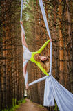 Beautiful and graceful trapeze artist performs exercises on aerial silk Royalty Free Stock Photo