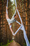 Beautiful and graceful trapeze artist performs exercises on aerial silk Royalty Free Stock Images