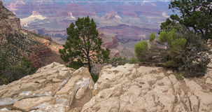 The Beautiful Grand Canyon. The Grand Canyon has withstood the test of time and man Royalty Free Stock Photography