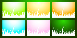 Beautiful grass background large collection. Royalty Free Stock Photo