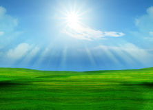Beautiful grass field and sun shining on blue sky Royalty Free Stock Images