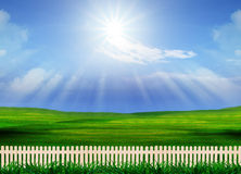 Beautiful grass field and wood fence use for natural background Royalty Free Stock Image