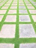 Beautiful grass tiles walk way Royalty Free Stock Photography