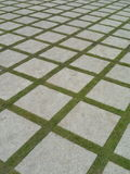 Beautiful grass tiles walk way in the garden. Beautiful grass tiles walk way in  garden Stock Photography