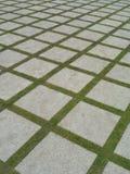 Beautiful grass tiles walk way in the garden Stock Photography