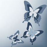 Beautiful gray background with butterfly Stock Images