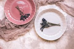 Beautiful gray and pink ceramic plates with a bouquet of lavender, pink gauze on gray concrete background. Vertical Stock Images