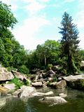 Beautiful green arboretum in the park Sofiyivka stock image