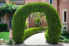 Beautiful green arch with decorative tree at the hotel Royalty Free Stock Images