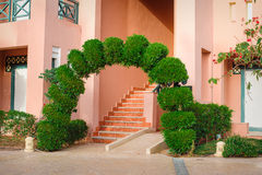 Beautiful green arch with decorative tree Stock Images