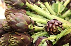 Beautiful green artichokes for sale in stand of greengrocers Royalty Free Stock Images
