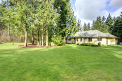 Beautiful green backyard Stock Images