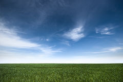 Beautiful green blue landscape Stock Image