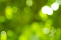 Beautiful green bokeh Stock Image