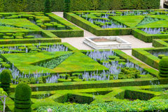 Beautiful green boxwood garden pruned into shapes. Stock Photo