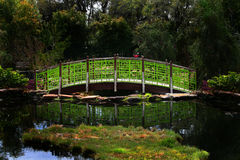 Green bridge Stock Images