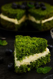 Beautiful green cake with spinach Royalty Free Stock Image