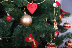 Beautiful green Christmas tree with Golden and red balls Royalty Free Stock Images