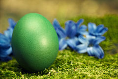 Beautiful green Easter egg Royalty Free Stock Photos