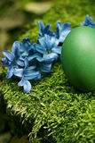 Beautiful green Easter egg Royalty Free Stock Photo