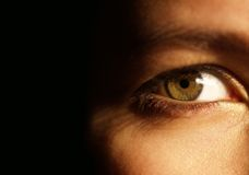 A beautiful green eye Royalty Free Stock Photography