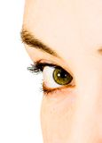 Beautiful green eye Stock Image