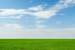 Beautiful green field and blue sky royalty free stock images