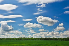 Beautiful green field and cloudy sky. Stock Photography