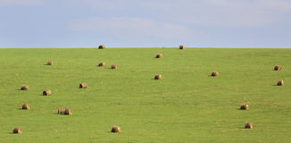 Beautiful green field with haystacks Stock Images