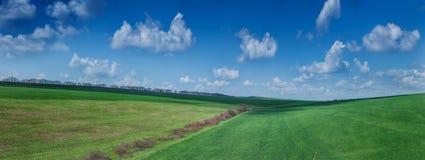 Beautiful green field summer landscape Royalty Free Stock Image