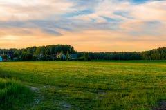 Beautiful green field at sunset Stock Photo