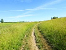 Simple road going on hill  in summer , Lithuania Royalty Free Stock Image