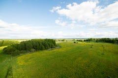 Beautiful green fields under blue sky in summer Royalty Free Stock Image