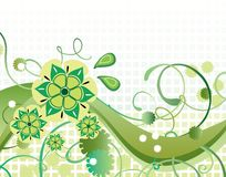 Beautiful green floral background. For your design Stock Photo