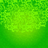 Beautiful green floral background Stock Images