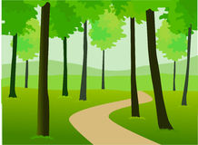 Beautiful green forest Stock Photography