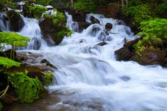 In the beautiful green forest on the huge rocks the fast tempestuous mountain waterfall flows. Royalty Free Stock Image