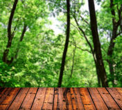 Beautiful green forest with wood planks floor Royalty Free Stock Images