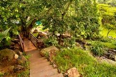 Beautiful green garden Stock Image