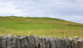 Beautiful green golf course in rural Ireland Royalty Free Stock Image