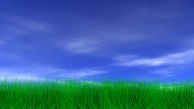 Beautiful Green Grass & Blue Sky Royalty Free Stock Images