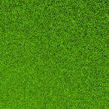 Beautiful green grass sward background Royalty Free Stock Photos