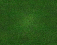 Beautiful green grass texture Royalty Free Stock Photography