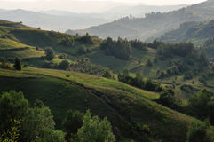 Green hills in late afternoon lights Stock Image